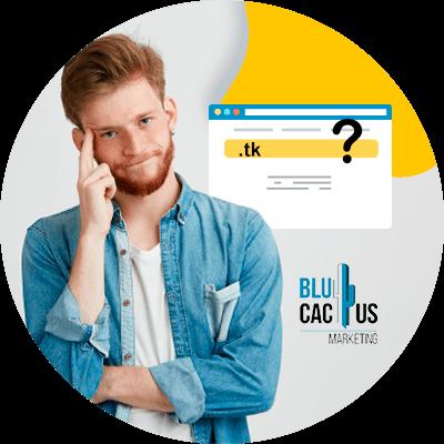 Blucactus-Hoe kiest men een domeinnaam