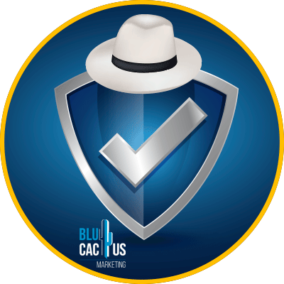 Blucactus-white hat seo-Security.