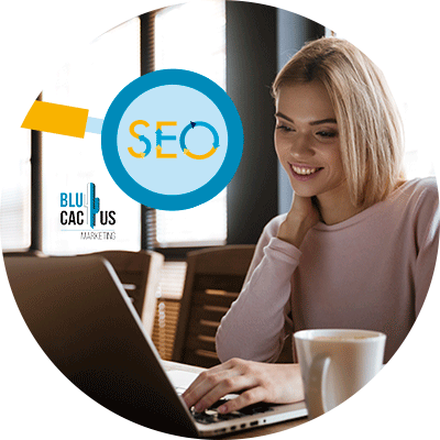 Blucactus-The-ranking-of-SEO-consultant-profiles-are.
