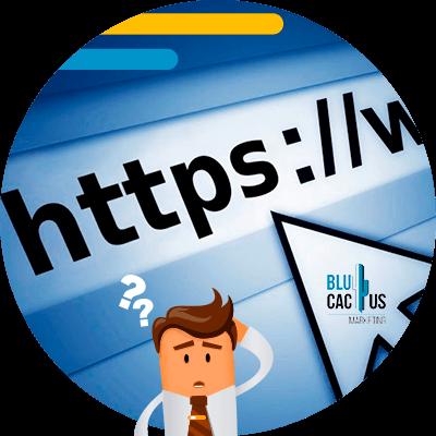 Blucactus-Hoe kiest men een domeinnaam- Wat-kan-ik-baseren-om-mijn-domein-te-kiezen.