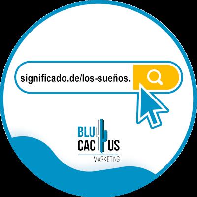 Blucactus-naam-extensie-woord-URL-trefwoord-woord