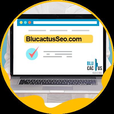 Blucactus-Hoe kiest men een domeinnaam- voorbeeld-1-domein-met-merk-en-trefwoord