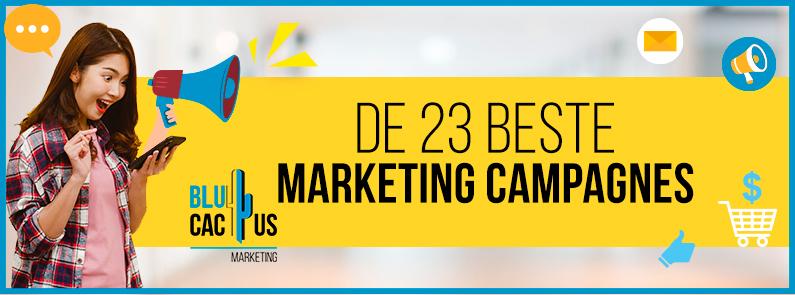 Blucactus - beste marketing campagnes - title