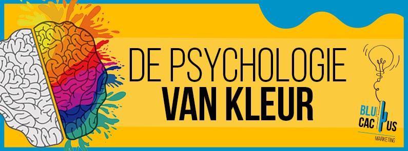 Blucactus-De-psychologie-van-kleur-