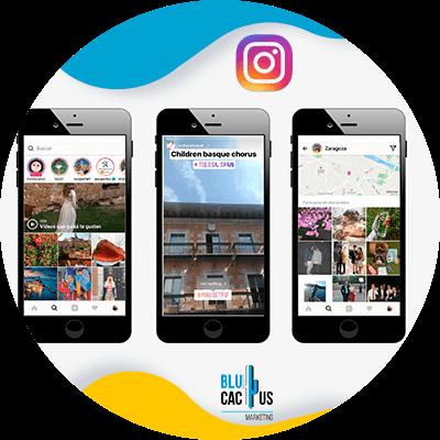 Blucactus-LinkedIn Stories-De-verhalen-zijn-onmisbaar-in-digitale-platforms.