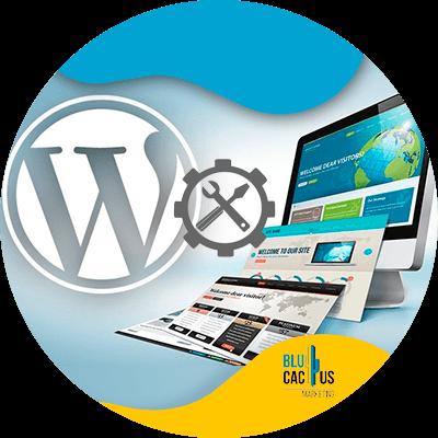 Blucactus-Extra-ondersteuning-voor-WordPress-Joomla-en-Prestashop