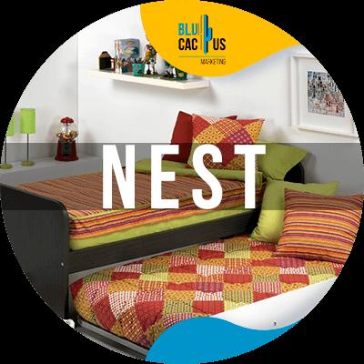 BluCactus - nest
