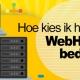 Blucactus-Hoe-kies-ik-het-beste-webhosting-bedrijf.