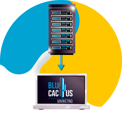 Blucactus-Hosting-toegewijd