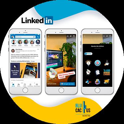 Blucactus-LinkedIn Stories-Maak-interactieve-inhoud-gerelateerd-aan-uw-inhoud-of-branche.