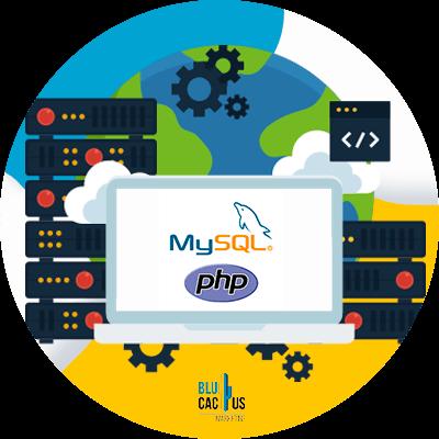 Blucactus-MySQL-en-PHP-databases