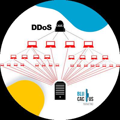 Blucactus-Hoe kies ik het beste webhosting bedrijf?-Security