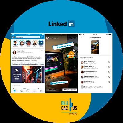 Blucactus-LinkedIn StoriesStories-de-LinkedIn-wat-zijn-en-hoe-merken-kunnen-gebruiken.