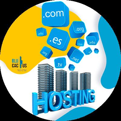Blucactus-Hoe kies ik het beste webhosting bedrijf?-Unlimited-domeinen