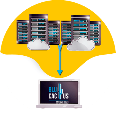 Blucactus-VPS-Hosting-Virtual-Private-Server.