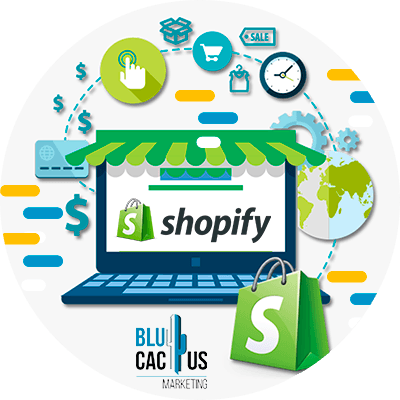 Blucactus-Wat-is-Shopify