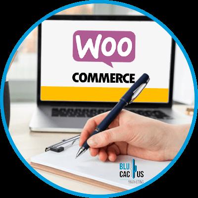 Blucactus-Wat-is-WooCommerce