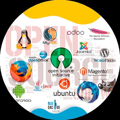 Blucactus-Wat-is-een-open-source.