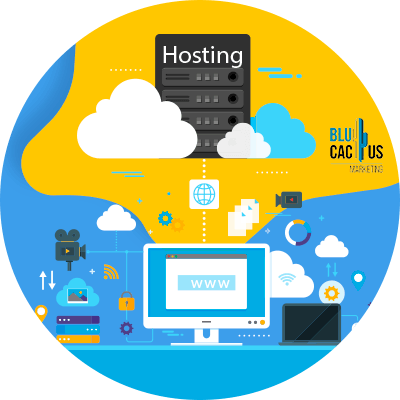 Blucactus-Wat-is-webhosting