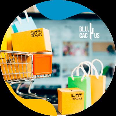 Blucactus-Hoe men mode verkoopt in tijden van crisis -Web-bruikbaarheid.