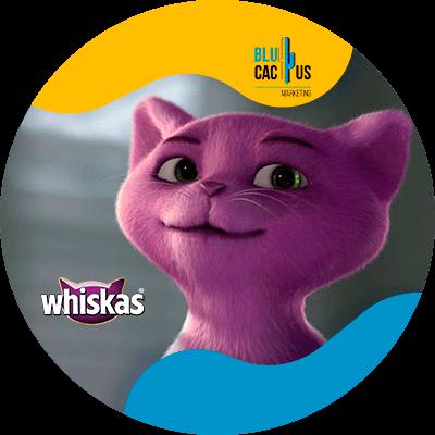 Blucactus - whiskas