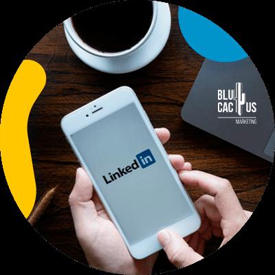 Blucactus-LinkedIn Stories-conclusie