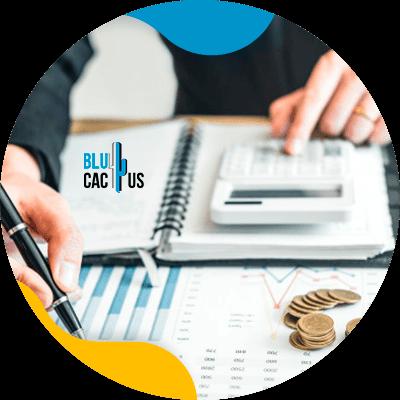 Blucactus-een-budget-bestemd-voor-digitale-marketing