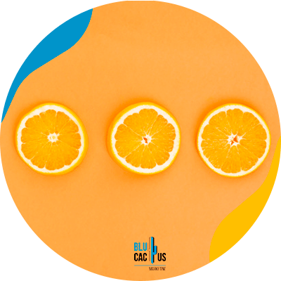 Blucactus-oranje