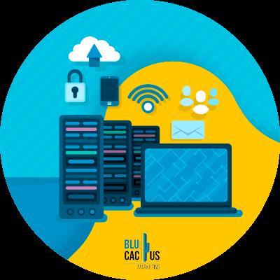 Blucactus-soorten-hosting
