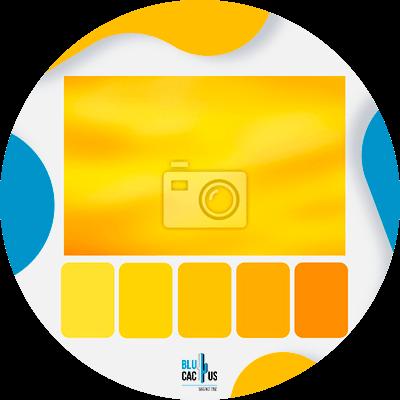 Blucactus-wat-zijn-de-meest-voorkomende-toepassingen-van-gele-kleur-in-de-wereld-van-reclame.