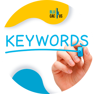 BluCactus-Tips-om-afbeeldingen-te-optimaliseren-voor-On-Page-SEO-1