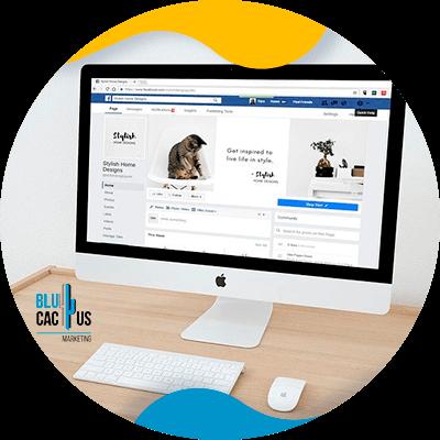 BluCactus - Soorten sociale media voor uw marketingstrategie - Beispiel für soziale Medien