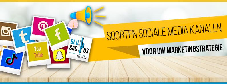 BluCactus - Soorten sociale media voor uw marketingstrategie - Title