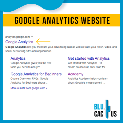Blucactus-Google Analytics opzetten 0-Google-analytics-website-