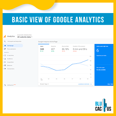 Blucactus-15-basis-weergave-van-google-analytics