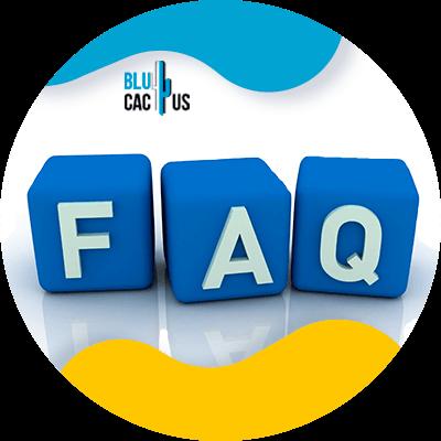 Blucactus- Wat is het verschil tussen een landingspagina en een website? -FAQ