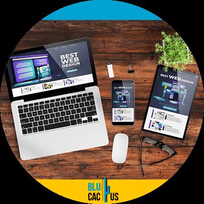 Blucactus- Wat is het verschil tussen een landingspagina en een website? -You-can-have-a-landing page-without-a-website