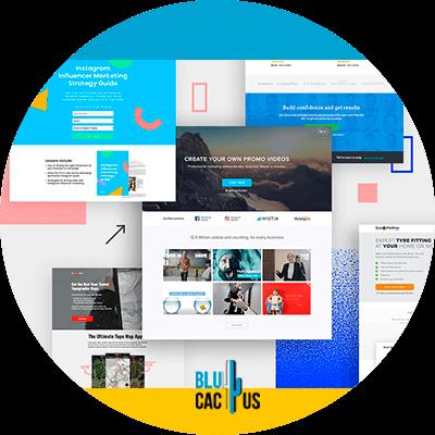 Blucactus- Wat is het verschil tussen een landingspagina en een website? -Ze-gaan-naar-een-segment