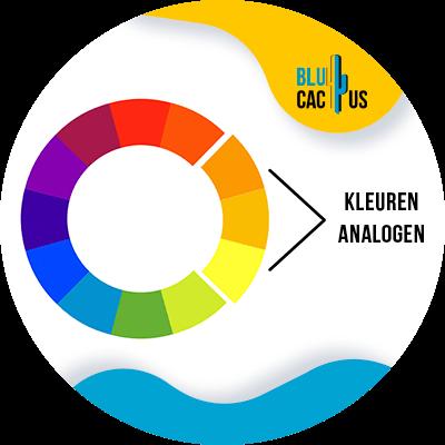 Blucactus-Hoe selecteert men de kleuren voor het logo van een modebedrijf?-analoog