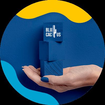 Blucactus-Hoe selecteert men de kleuren voor het logo van een modebedrijf?-blauw
