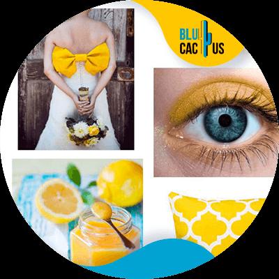 Blucactus-Hoe selecteert men de kleuren voor het logo van een modebedrijf?-geel
