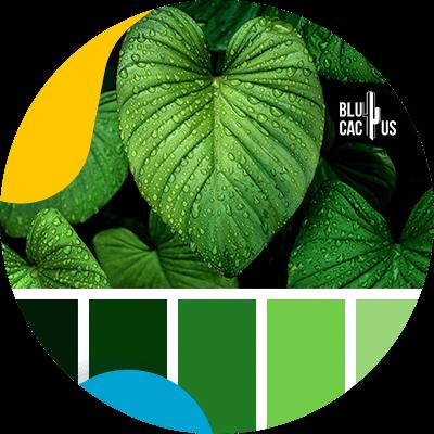 Blucactus-Hoe selecteert men de kleuren voor het logo van een modebedrijf?-groen