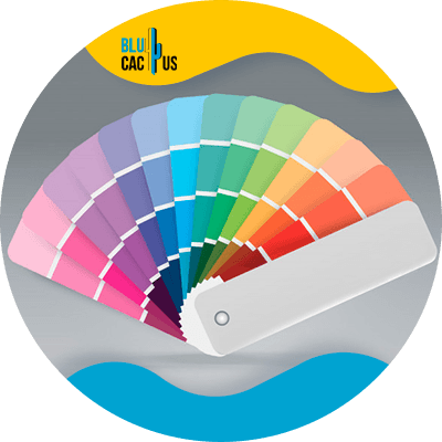 Blucactus-Hoe selecteert men de kleuren voor het logo van een modebedrijf?-in-case-hij-was-vergeten