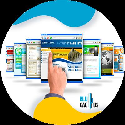 Blucactus- Wat is het verschil tussen een landingspagina en een website? - wat-is-zijn-belang