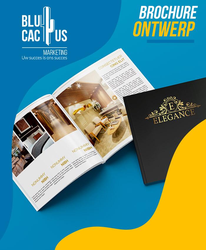 BluCactus Brochure ontwerp