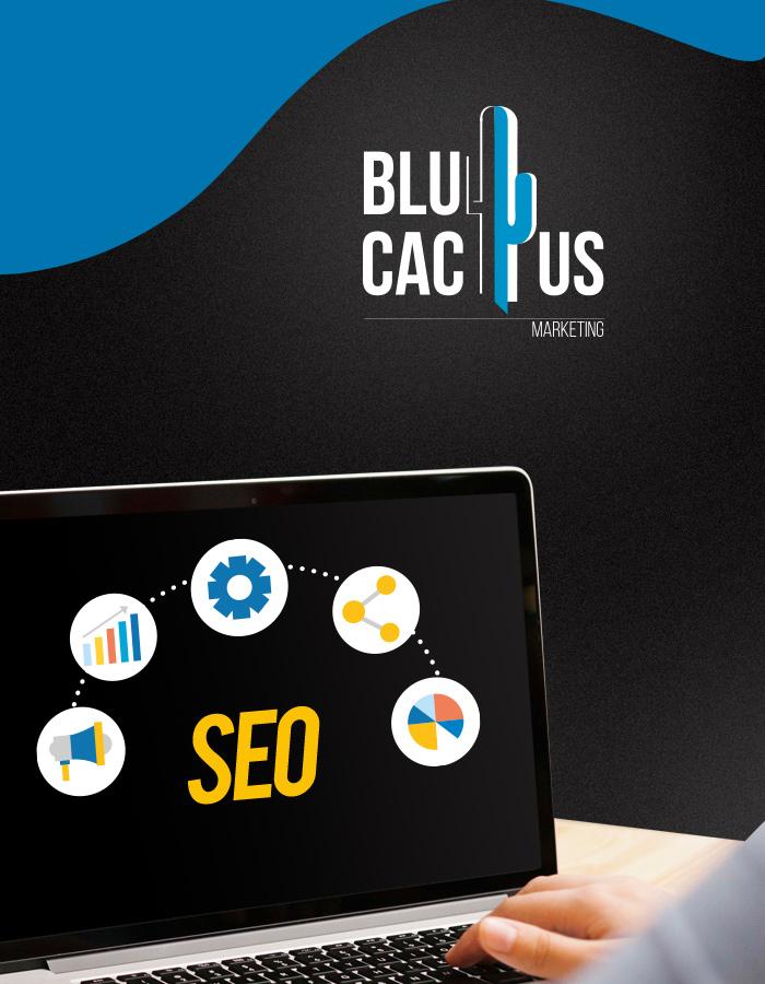 BluCactus SEO diensten Inkomende marketing
