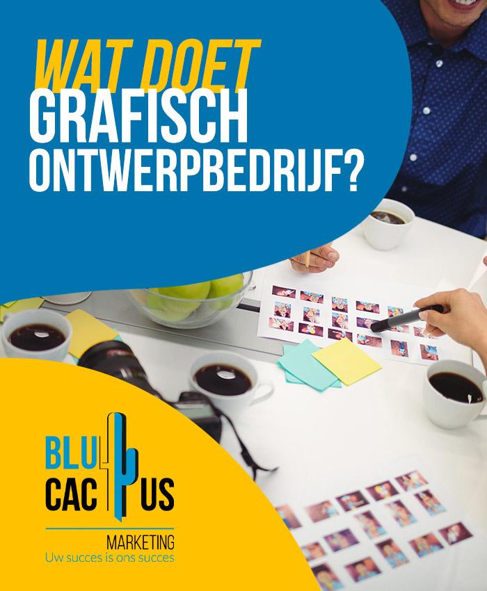 BluCactus Wat doet grafisch ontwerpbedrijf grafisch ontwerpbureau