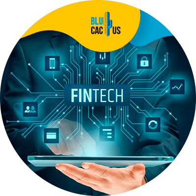 Blucactus-Gamification-in-FinTech