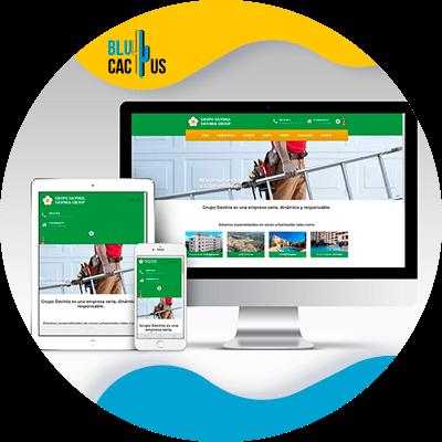 Blucactus Ontwerp een website-web