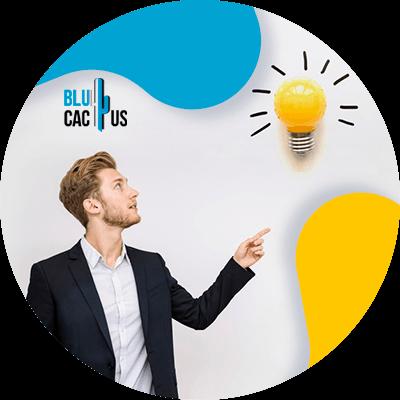 Blucactus-idee-en-concept